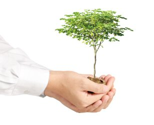 Helping you to grow your business